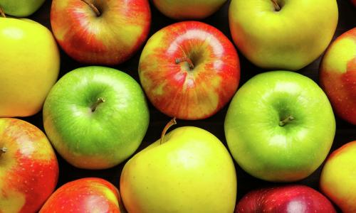 Можно ли есть яблоки каждый день? И нужно ли. Рассказывает врач-диетолог