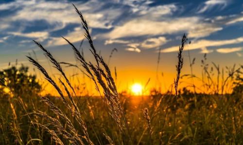 Терапевт рассказала, какие заболевания обостряются в солнечную погоду
